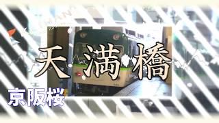 京阪桜 【京阪本線_鴨東線×千本桜】