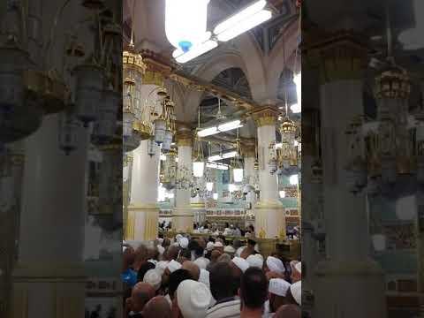 Masha Allah Riyadh ul Jannah Madinah Munawara Saudi Arabia