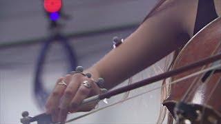 Технологии помогут виолончелистам избежать профессиональных травм (новости)