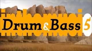 Liquid DnB Mix 5 (Kubiks, Ian Halsall, 2DB, Levela, ...)