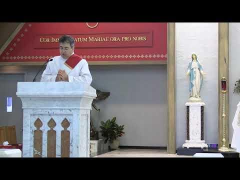 Daily Mass 11/25/20