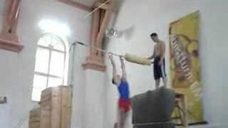 Tisea Alin-horizontal Bars-ginger