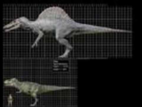 Spinosaurus Aegyptiacus and Tyrannosaurus Rex size - YouTube