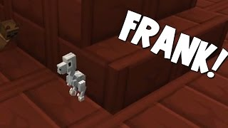 minecraft attack of the b team frank 32