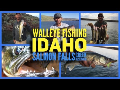 Walleye Fishing Idaho (how To)