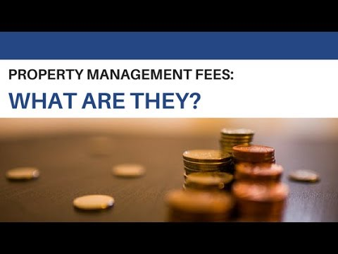 What Are Professional Property Management Fees in Connecticut?