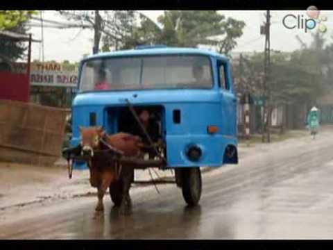 Funny transport - YouTube