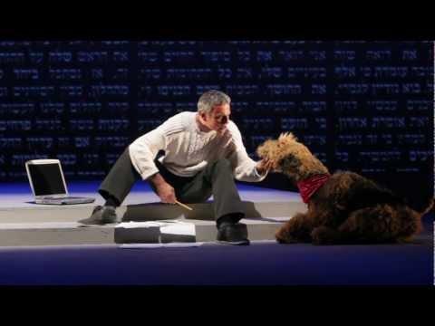 תיאטרון הבימה - 'כוכב יאיר'