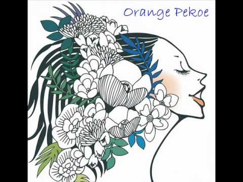11 - Bottle -Orange Pekoe