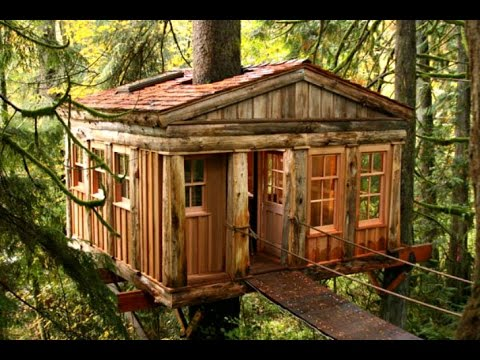 Amazing Treehouses For Kids Awesome Home Decor