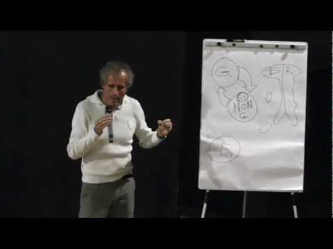 Paolo Barnard - COME L'EURO DISTRUGGE L'ITALIA