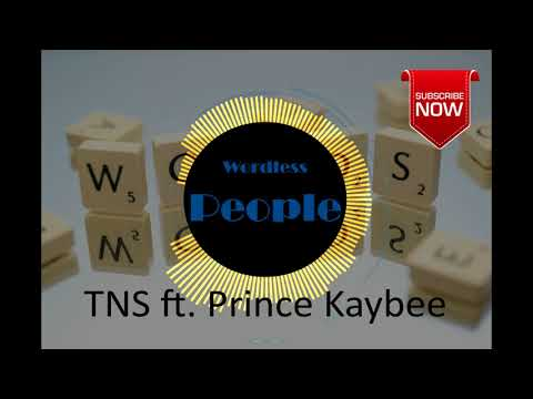 TNS – Wordless People Ft  Prince Kaybee
