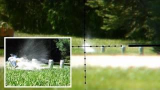 Air Rifle Shooting Beers @ 170 Yards