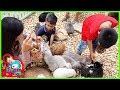 น้องบีม | ให้อาหารกระต่าย เที่ยวราชบุรี เวเนโต้สวนผึ้ง EP2