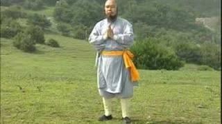 Repeat youtube video 少林七星拳- 释永智 shaolin qixingquan- shi yongzhi