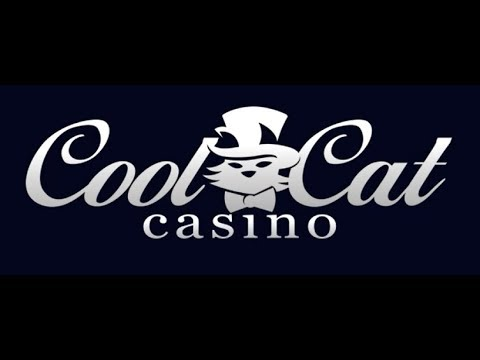 CoolCat Casino Bonus Codes & Review - USA Online Casino