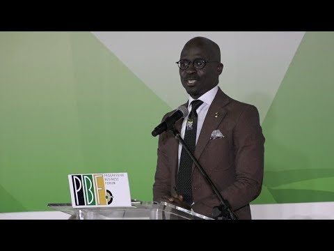 Gigaba: You can land a plane at NASREC if you want