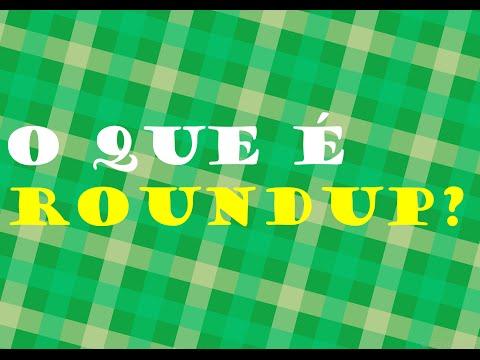 O que é Roundup?