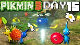 Pikmin 3: Stolen Juice Blues - DAY 15 (Nintendo Wii U HD Gameplay Walkthrough)