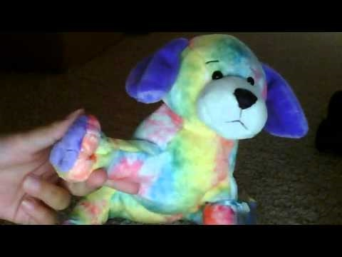 Webkinz Tie Dyed Puppy And Me