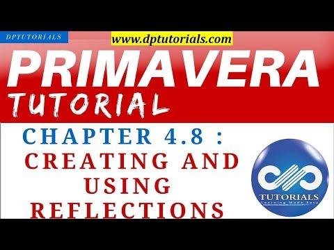 primavera-p6-tutorials-:-chapter---4.8-:-creating-and-using-reflections-||-dptutorials