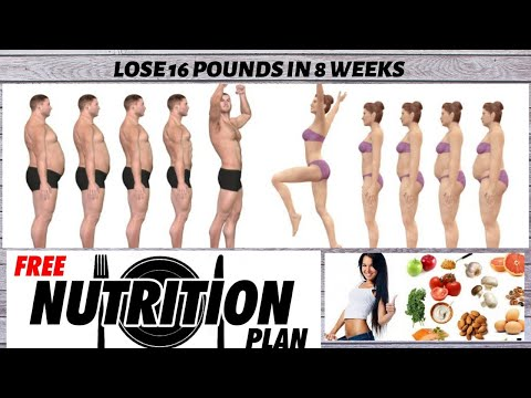 lose-16-pounds-in-8-weeks-||-science-based-fat-loss-||-free-nutrition-plan-||-english-||-vid-5
