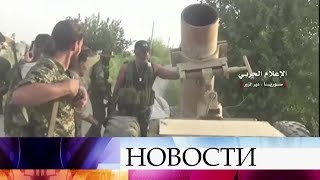 Сложить оружие вСирии согласились несколько сотен боевиков