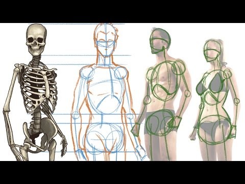 How To Draw The Human Figure Body Construction Tutorial Youtube
