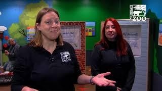 Wings of the World New Family Fun - Cincinnati Zoo