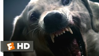 The ABCs of Death (2/10) Movie CLIP - D is for Dogfight (2012) HD