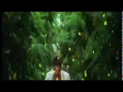 Thalaivaa - sol sol promo song