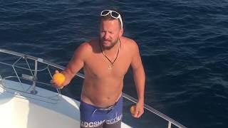 Москва - Сочі по воді (епізод 17: Анапа - Геленджик, дача Путіна, дельфіни, квадроцикли, риболовля)