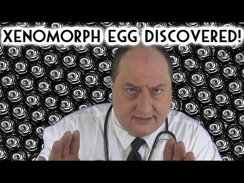 ASMR Xenomorph Egg Discovered!