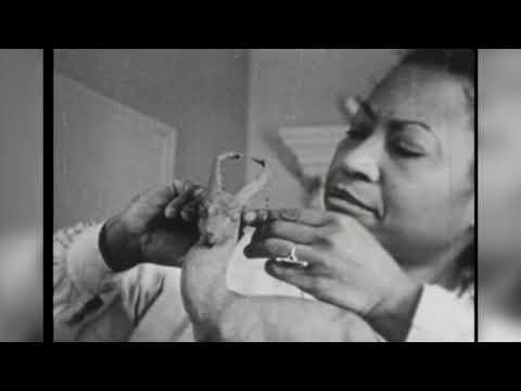 Black History Month: Augusta Savage