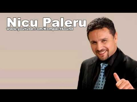 Nicu Paleru - La sfarsitul saptamanii Muzica de Petrecere (Audio Original) - 동영상