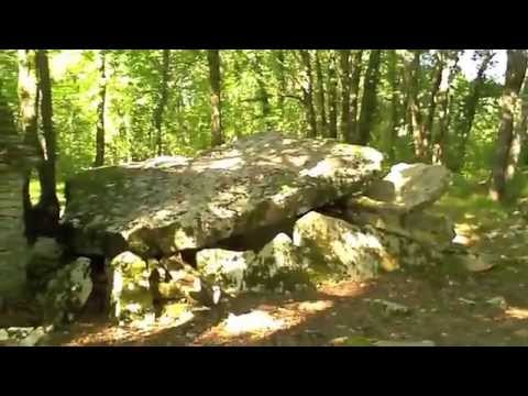 Neolithic Dolmen in the Woods