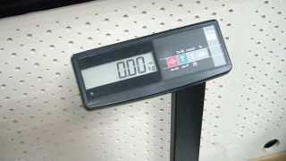 товарные весы TB-S МАССА-К - обзор