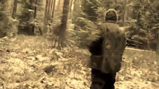 Кабан насмерть забодал охотника