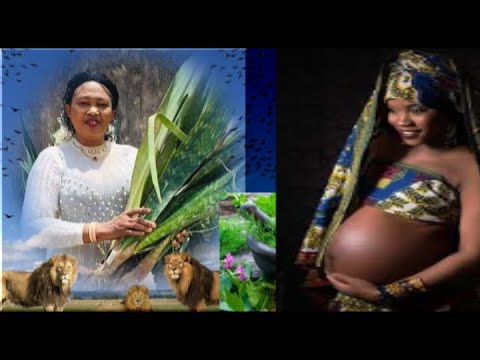 treat-salpingitis-with-natural-herbs,-get-pregnant-naturally