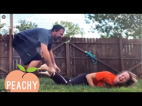 Best Funny – Fail Videos – Back To Nature – Fails of the Week – Funny Fail