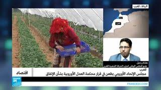 المغرب: مجلس الإتحاد الأوروبي يطعن في قرار محكمة العدل الأوروبية بشأن الإتفاق الفلاحي