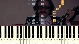 Org Ve Piyano Dersleri Resimdeki Gözyaşları Cem Karaca Taci Hoca 0543 232 91 22