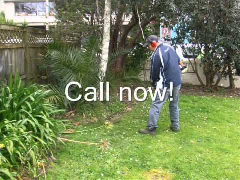 Lawn mowing services auckland mount eden mt roskill for Auckland landscaping services