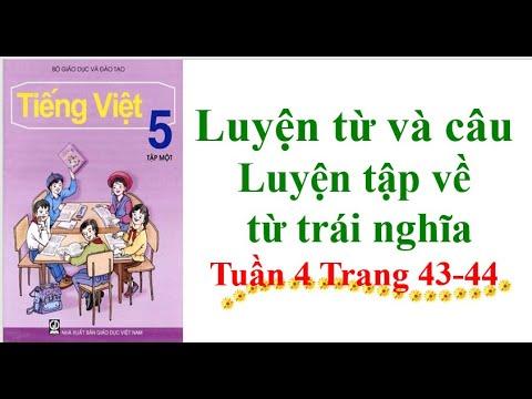 Luyện từ và câu Lớp 5 Luyện tập về từ trái nghĩa Tuần 4 Trang 43-44