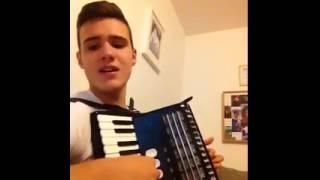 Adnan Ado - Ljubavi moja (Harmonika cover)