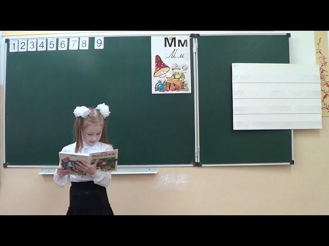 Изображение предпросмотра прочтения – ВасилисаНефёдова читает авторское произведение «Иван Сергеевич Тургенев Бежин луг»