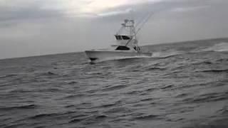 Charter Boat Full Draw