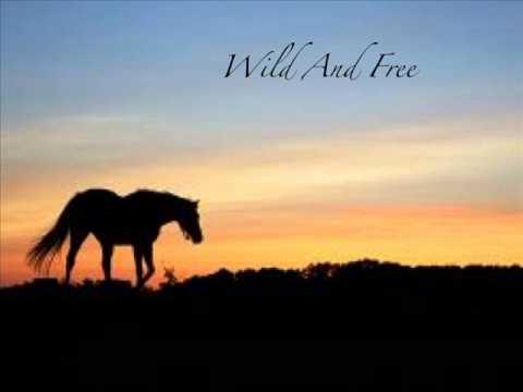 Delaney Monias  Wild and Free