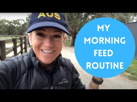 My Morning Feed Routine!