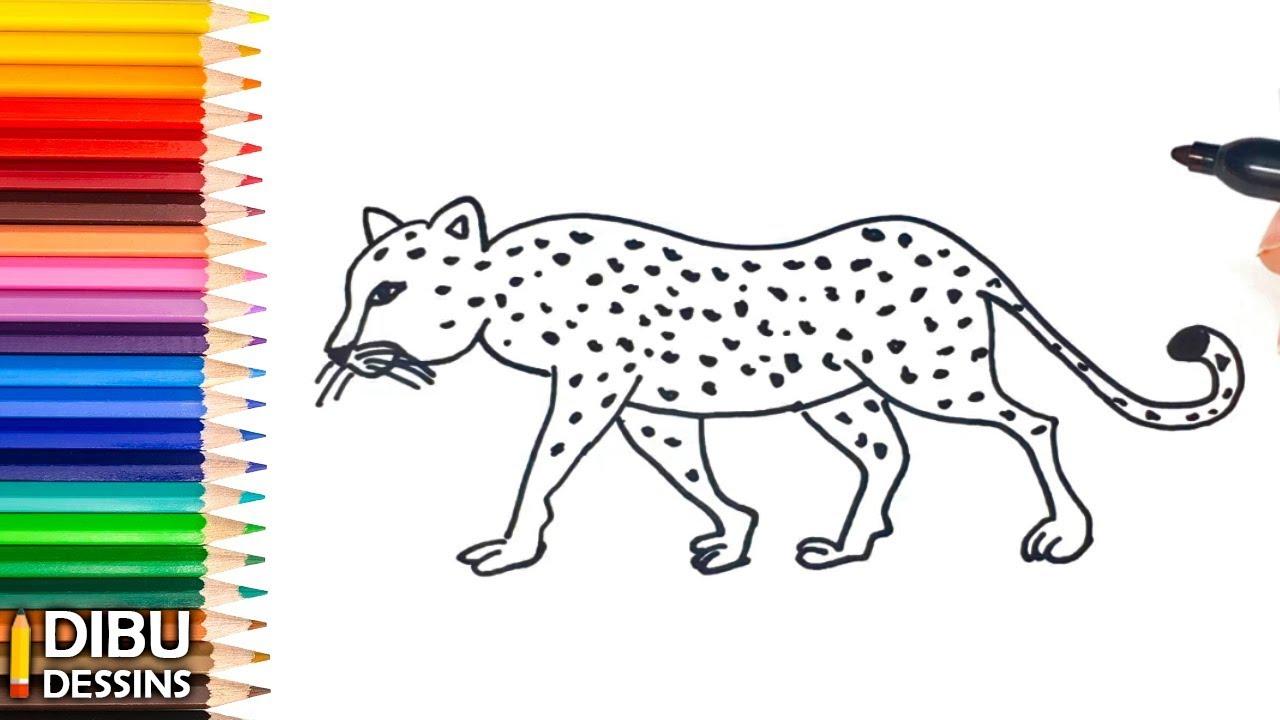 Comment Dessiner Un Leopard Dessin De Leopard Youtube